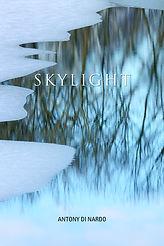 Skylight_FC.jpg