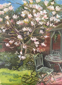 Walled Garden Magnolia.jpg