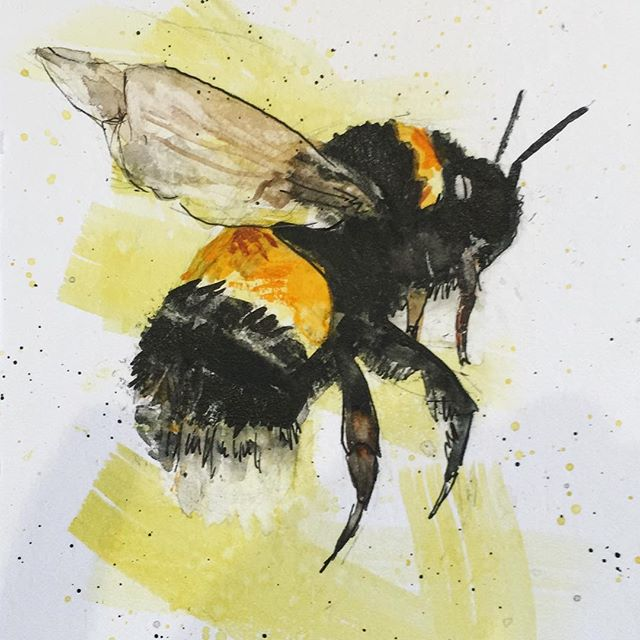 Buzz buzz, trying some more watercolours