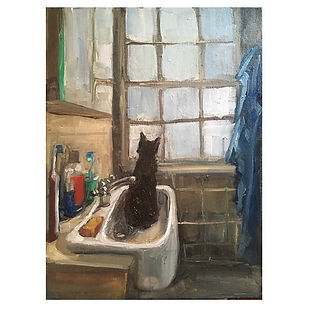 Cat in the Sink .jpg