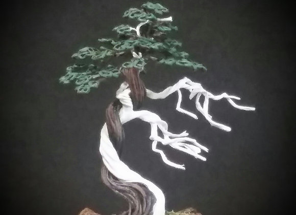 #154 Simple Bonsai Tree With Deadwood