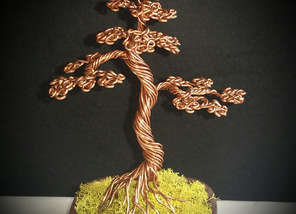 #77 Cooper Bonsai Wire Sculpture