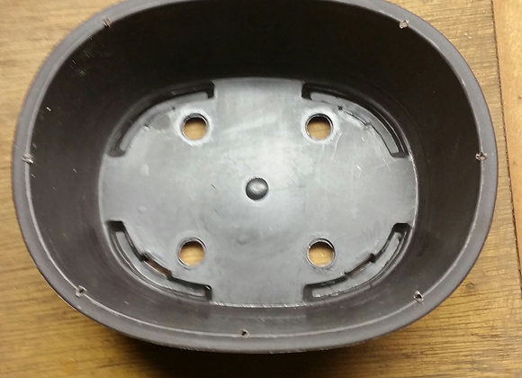 pre-drilled Guy wire Oval training pots 5x6