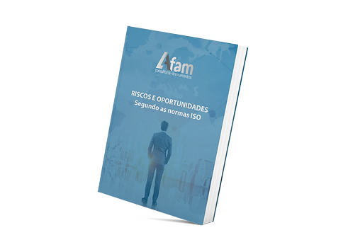 book_riscos e oportunidades.png