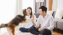 photo_couple-and-dog.jpg