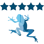 Review-5-stars.png