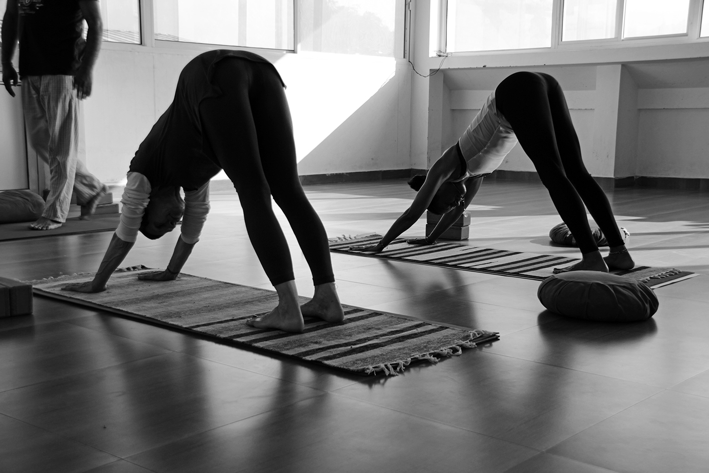 Yoga School In Rishikesh India Yoga Courses In Rishikesh 2020