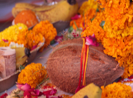 The Auspicious Coconut