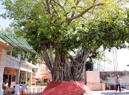 Rishikesh's Legendary Shri Bharat Mandir
