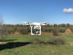 Dron Phantom 3 Advanced en vuelo
