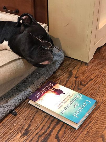 dog reading copy_edited.jpg