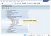 Программы обучения конечных пользователей по стандарту SAP и EICPA