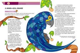 A arara-azul-grande