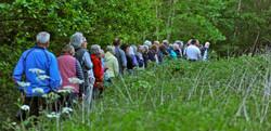 Ian Bott guided walk Summer 2019