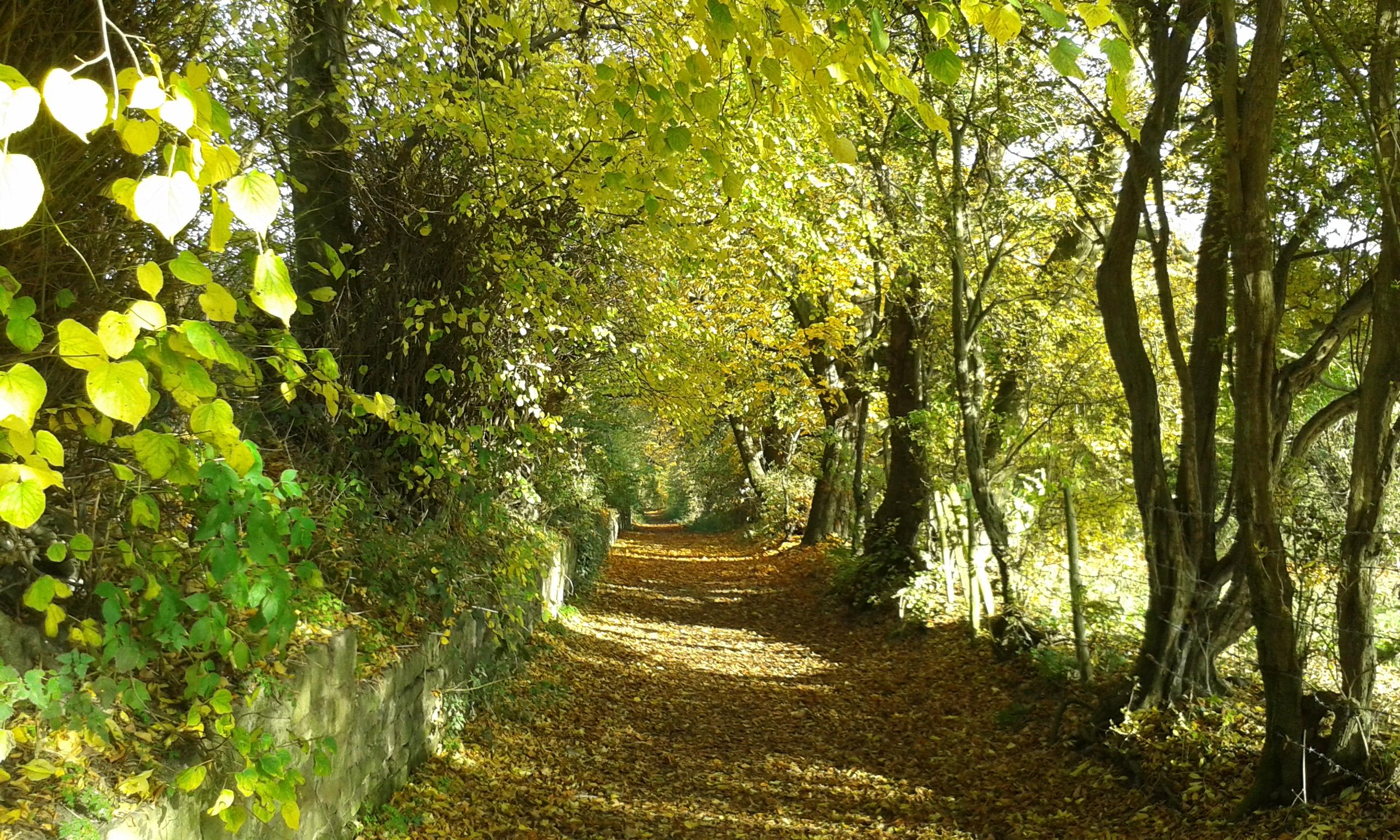 Turls Hill, Sedgley