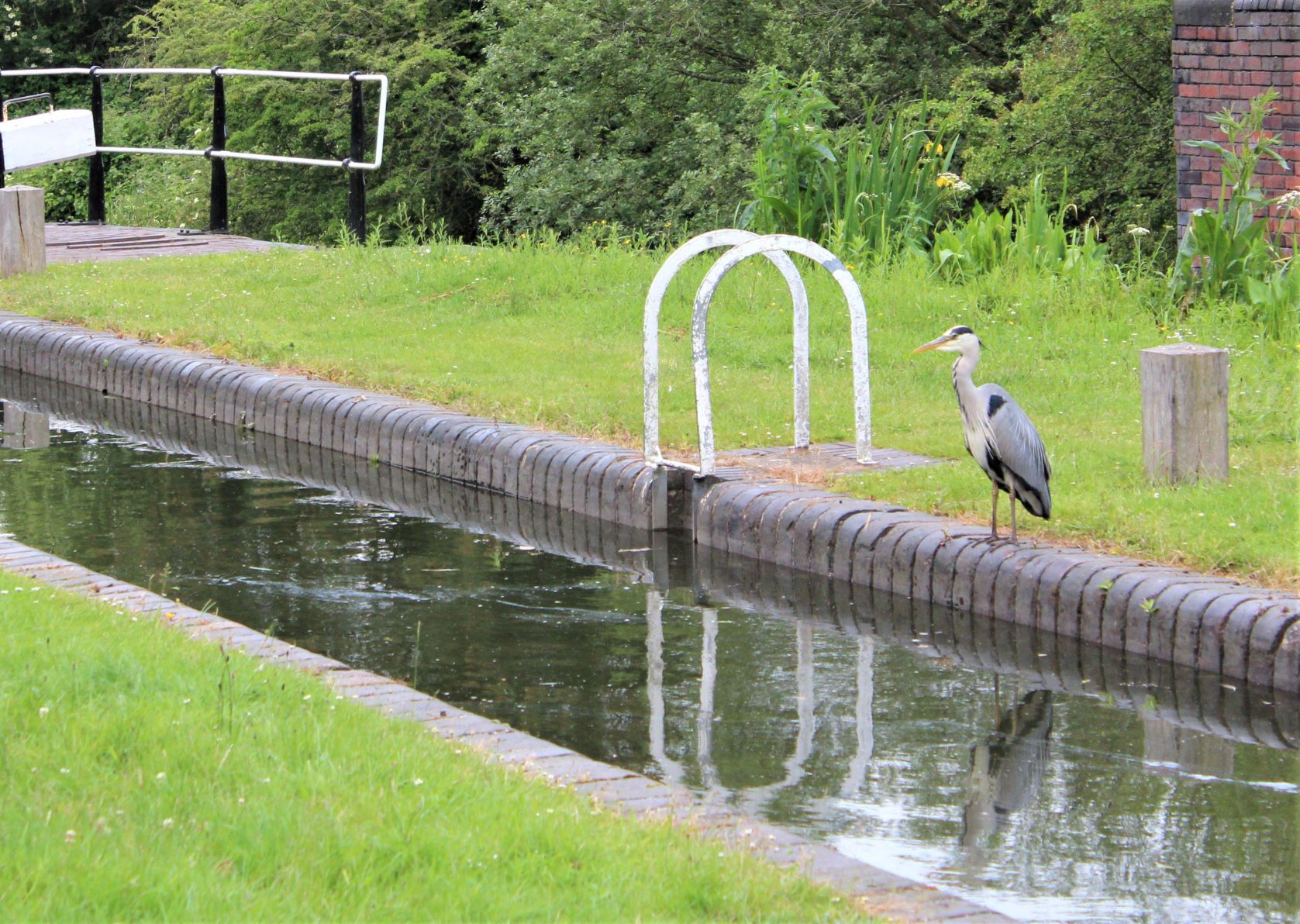 Dudley No 1 canal 9 Locks Delph Brierley