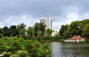View thru Walsall Arboretum T Ridge.jpg