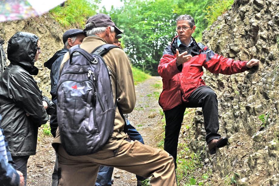 Wrens Nest walk 6