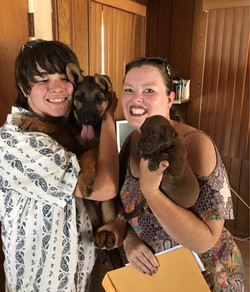 We love our dogs from D&K Boerboels