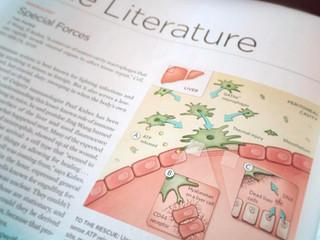 The Scientist: Liver Regeneration