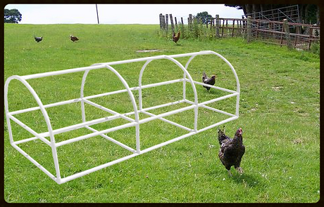 Superbe Build Your Own Portable Chicken Coop | Snap Clamp | California | Circo  Innovations