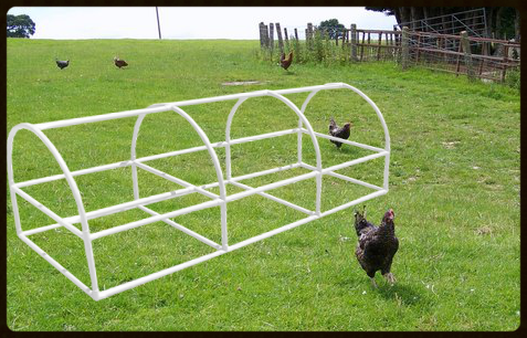 Portable Arched roof chicken coop