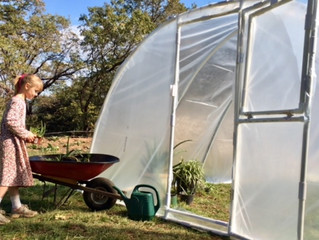 How to Build the Best PVC Greenhouse