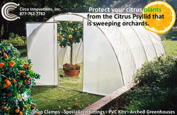 Protect your Citrus with Circo