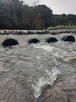 Culverts performing well