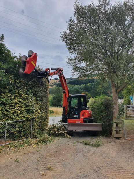 Hedgecutting