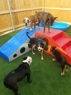 outdoordaycare