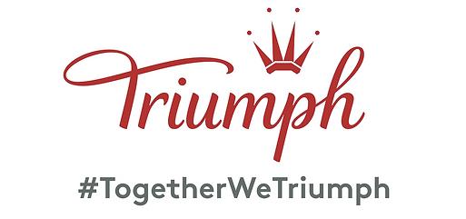 Triumph Banner 1.png