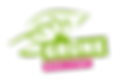 Gruene_BS_Logo_web.png