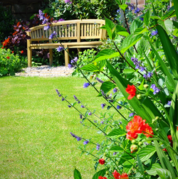 family garden, Maidenhead