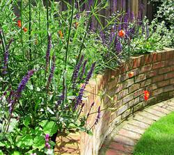 small town garden, Marlow