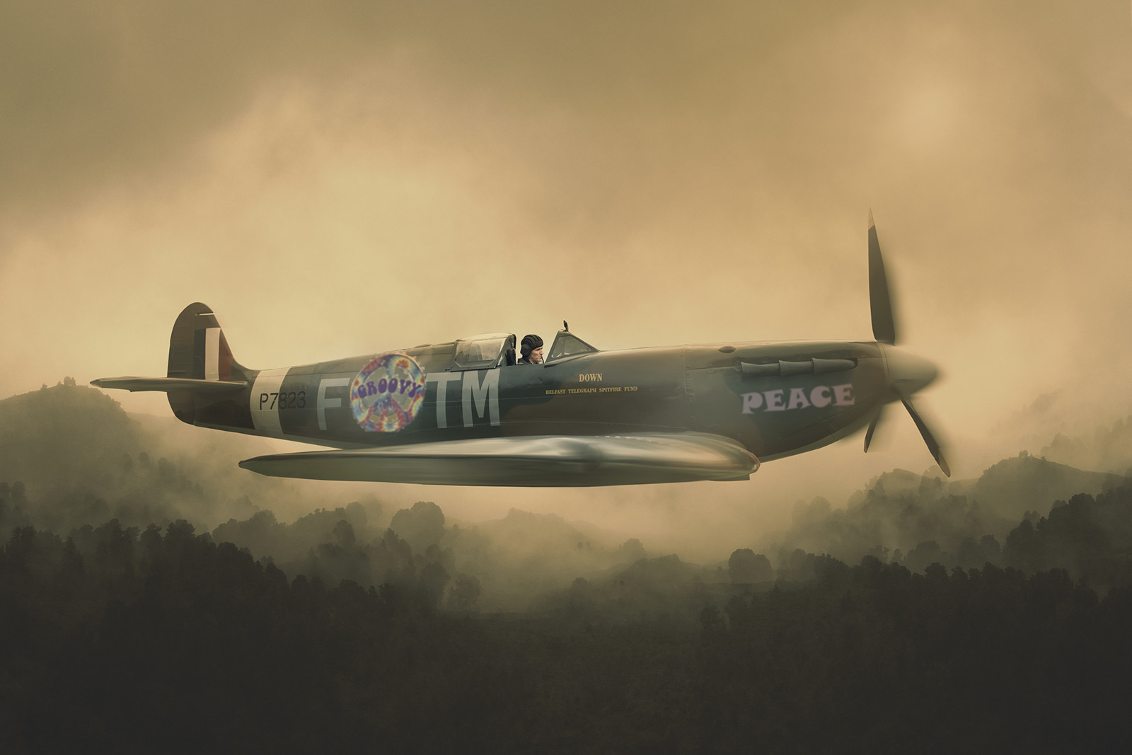 COLOUR - Pease Spitfire by Carson Clarke (10 marks)