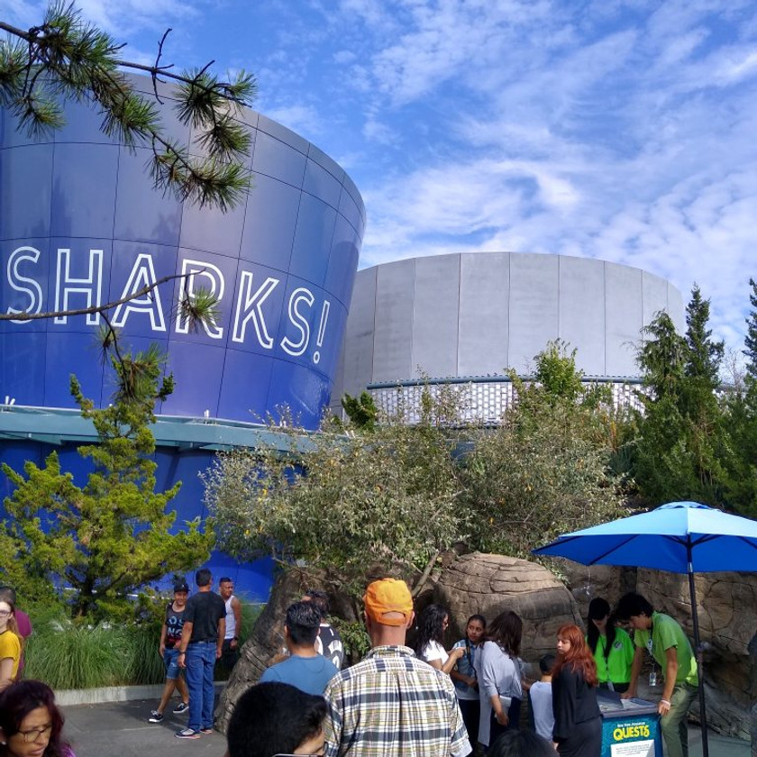 Two large round towers of the Sharks! exhibit