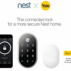nest-yale-547x400.png
