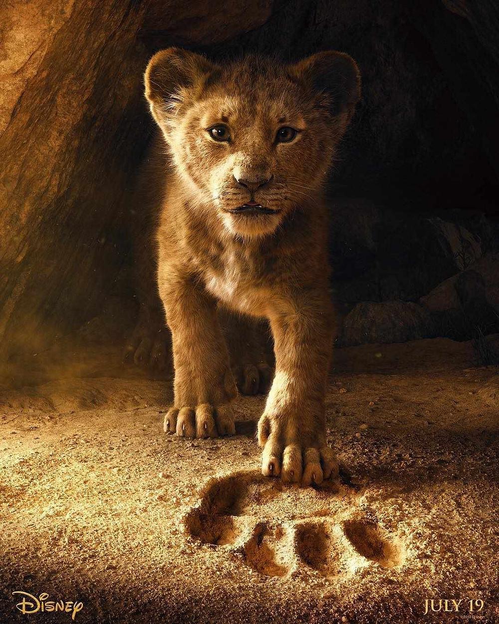 Le roi lion the lion king disney affiche du film