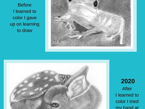 How Coloring Can Turn into a Passion for Art