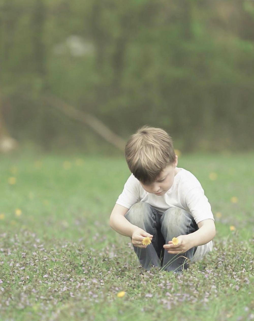boy picks flower in field