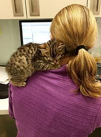 Kitten alseep on her shoulder