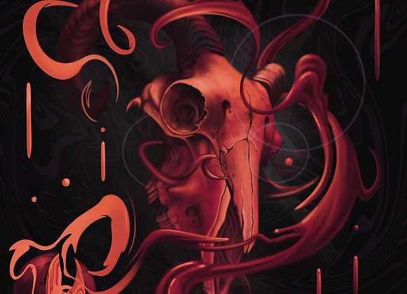Origin Of The Skull Poster