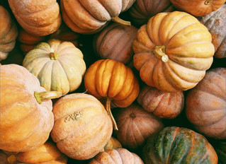 Seeking Pumpkins of All Sizes