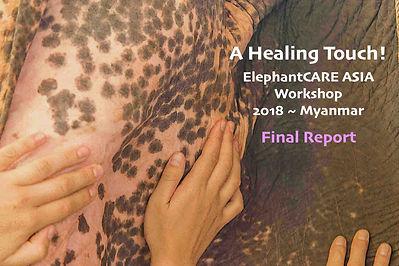 A Healing Touch.jpg