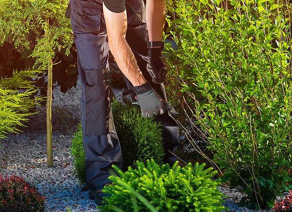Temps de jardinage par matinée de 8h00 sur place