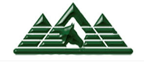 wsqha logo.jpg