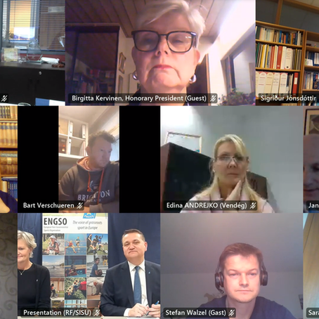 The ENGSO General Assembly 2020 went virtual