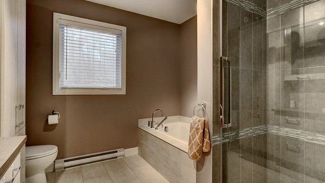 Maison plain-pied avec garage - Salle de bain 2