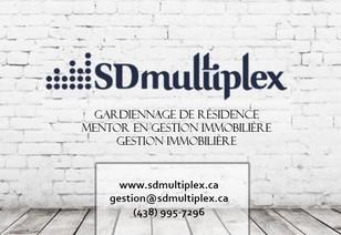 SDmultiplex